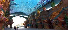 臭氧在海洋馆水处理的应用