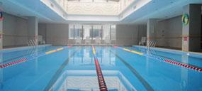 臭氧在泳池水处理中的应用